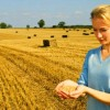 Imu agricola, i nuovi criteri
