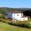 In Sardegna la più grande rete di agriturismi